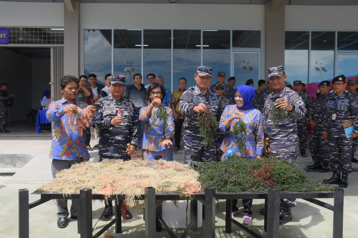 Anggota TNI dan Masyarakat Kepri Diberi Pelatihan Budidaya Rumput Laut Oleh Koarmada I