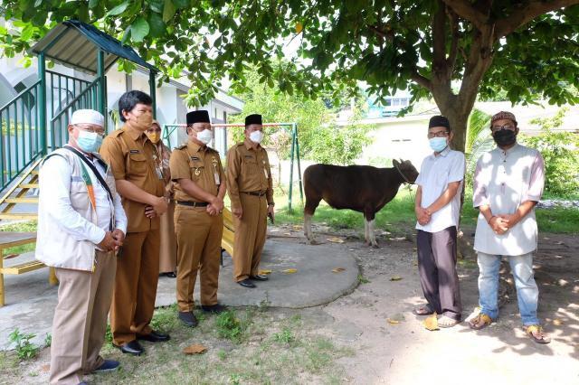 Pemko Serahkan 43 Ekor Hewan Qurban untuk Masjid dan Surau